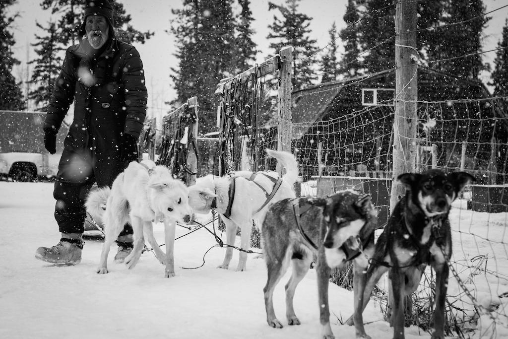 Gilles et ses chiens