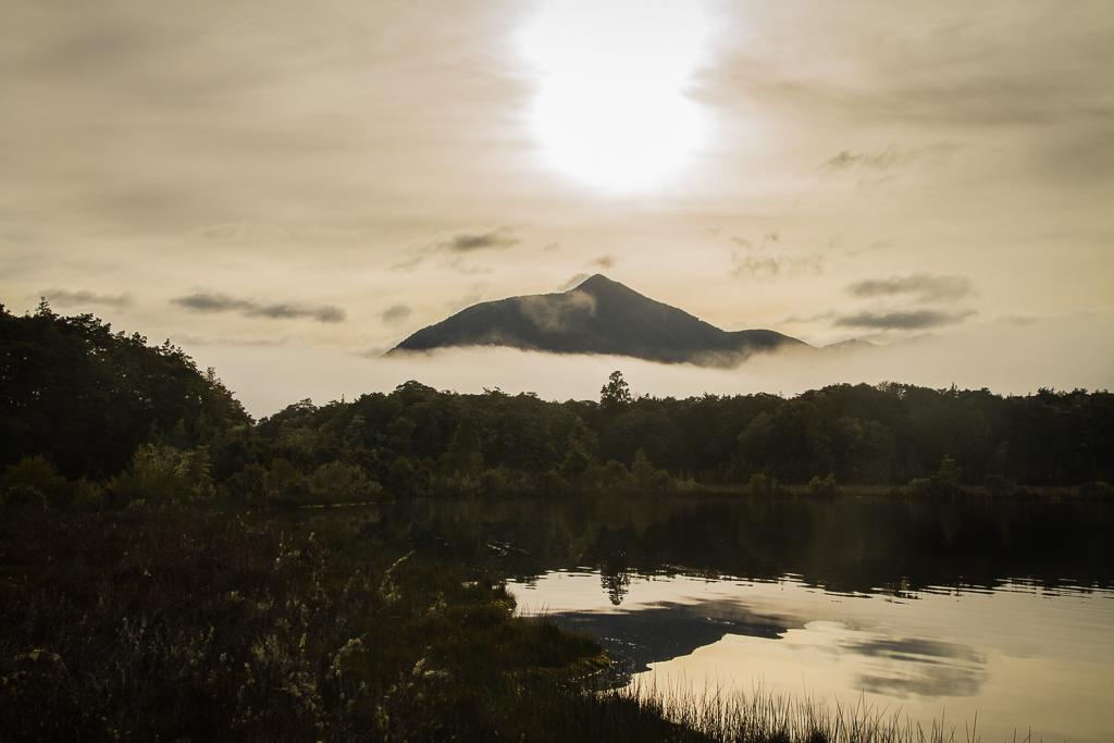 Sur la route en direction du Lac Te Anau