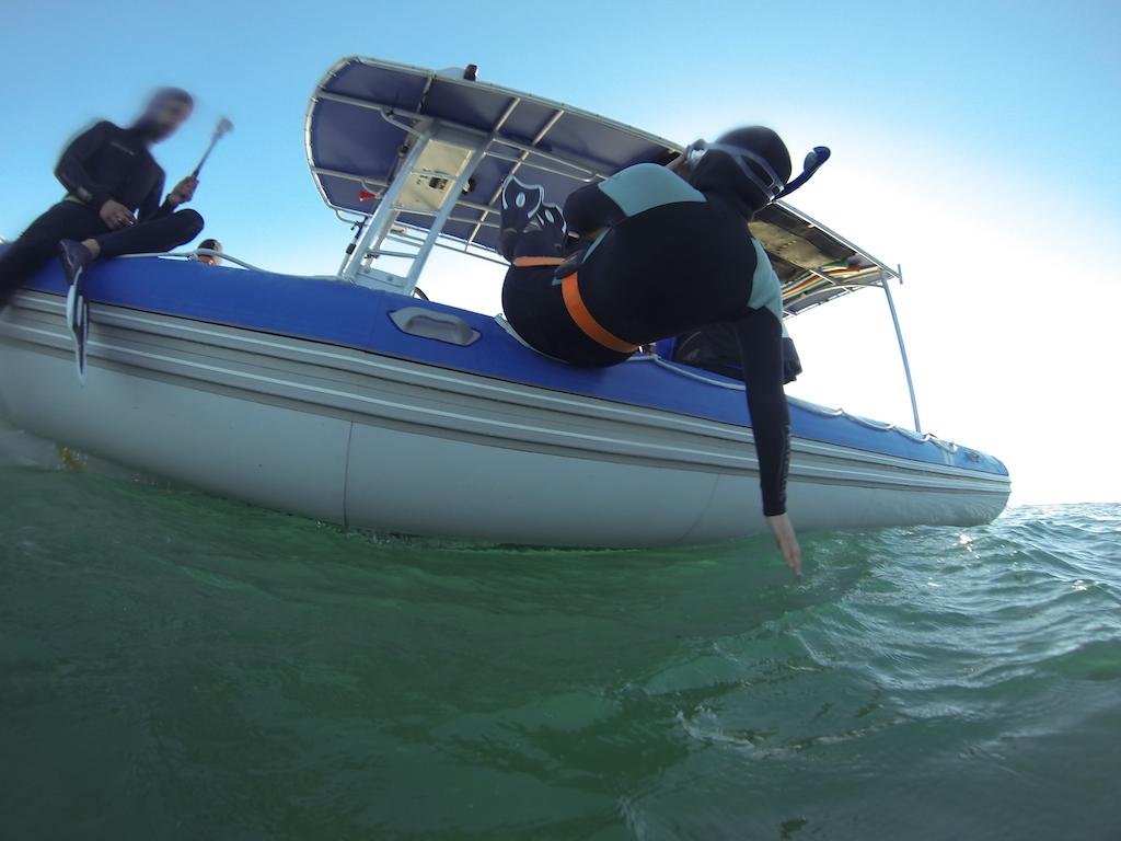 Magnifique entrée dans l'eau à Byron Bay